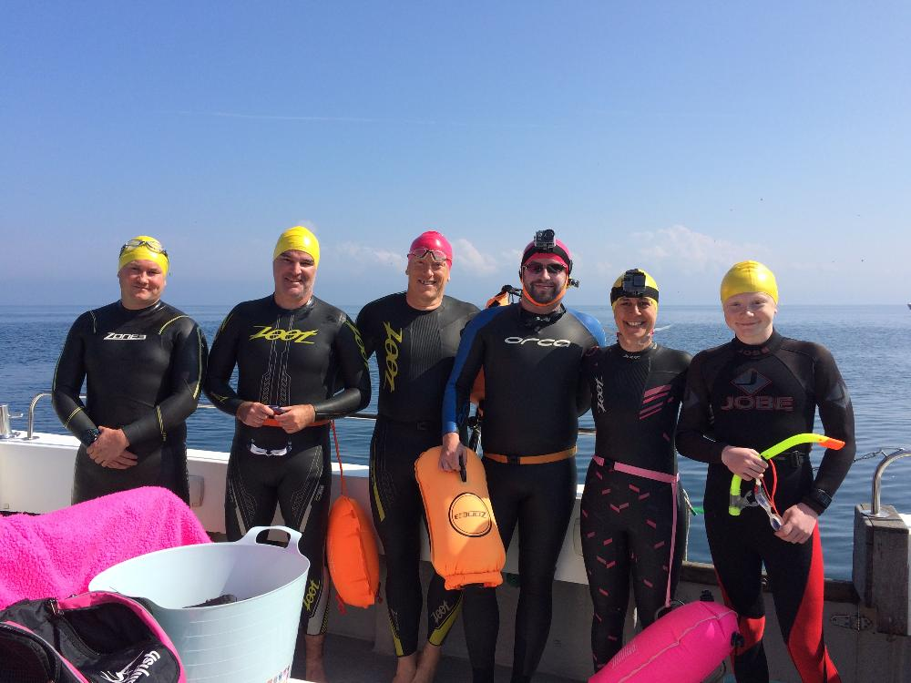 Sea swimming safari in Pembrokeshire