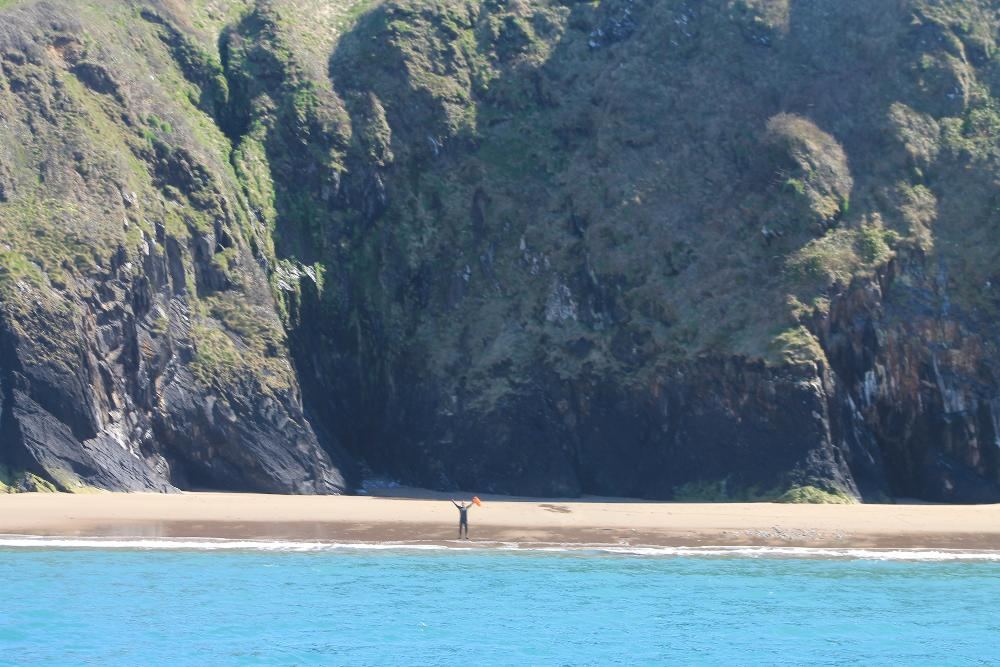 Swimming adventures on Skomer Island