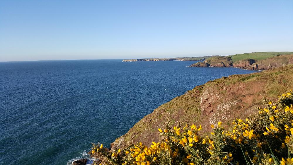 Things to do in Pembrokeshire - hiking along the Pembrokeshire Coast Path