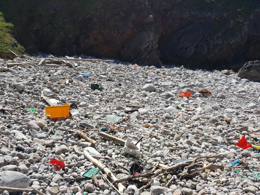Plastic sea junk in Pembrokeshire