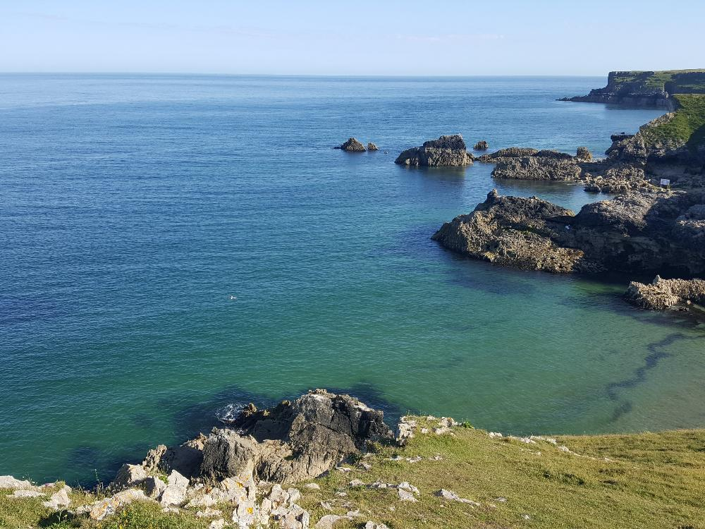 Open Water Swimming Pembrokeshire Broadhaven South Wales Uk